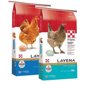 Purina Layena Pellets or Crumbles