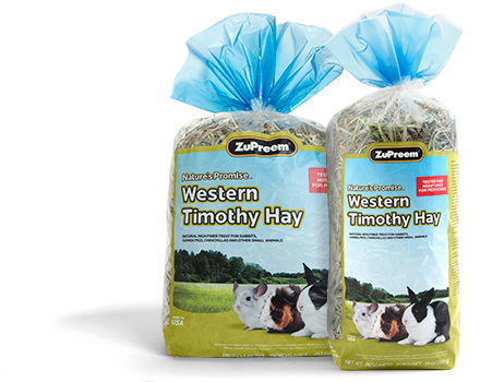 NATURE'S PROMISE® WESTERN TIMOTHY HAY