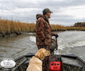 Prepping Your Hunting Dog