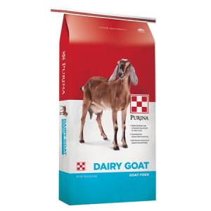 Purina Dairy Goat Parlor 16