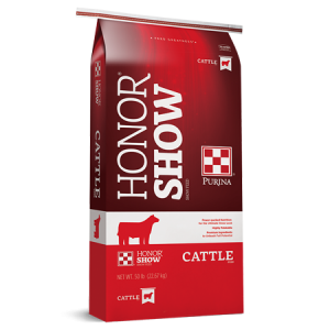 Honor Show Chow Cattle