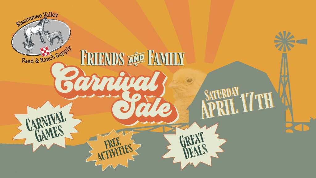 friends and family carnival sale